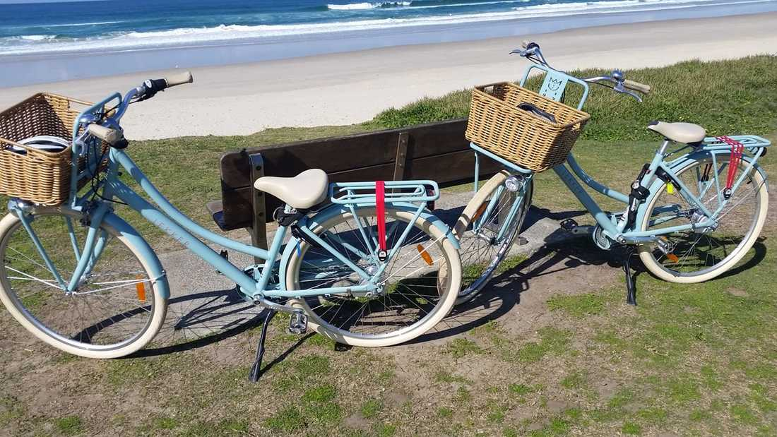 92be8a378cf Bicycle Hire in Ballina - THE BICYCLE EMPORIUM